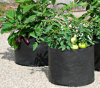 Root Control Non Woven Grow Bag for Gardening