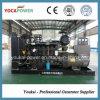 Ricardo 200kw/250kVA Diesel Electric Generator Set