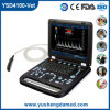 Ysd4100-Vet Veterinary Color Dopler Ultrasound Machine