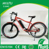 350W 48V Electric Mountain Bike, /off Road Dirt Bike
