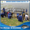 Farming Tilapia Aquaculture Net Cage for Ghana