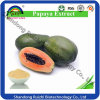 Factory Hot Sale 100% Natural Papaya Seed Extract