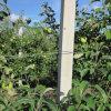 Precast Concrete Column Machine for Sell