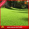 8-10 Years Always Green Artificial Grass Supplier