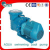 Water Pump for Swimming Pool