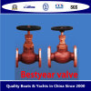 Bestyear Bronze Valve for Marine