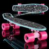 Penny Skateboard with 22 Inch Size (YVP-2206-4)