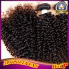 Kinky Curl Virgin Brazilian Human Hair Weaving