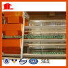 Layer Chicken Poultry Farm Machines with Full Set Design