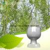 Natural Antioxidant Activity Extract Chrysin 98%, 99% HPLC