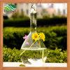 Transparent Crystal Glass Hanging Vases