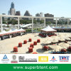Pagoda Party Tent 6X6m in Europe (PA6/2.5-6)