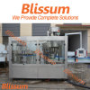 China Manufactured Bottled Spring Water Processing Machine/Machinery/Line/Plant