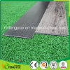 Click System Virgin Vinyl Floor for Commercial Building