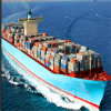 Sea Freight FCL /LCL Shipping From Shenzhen to The Port of Durban
