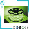 Flexible Tape Full Color LED Strip Light for Decoration