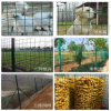 China Green PVC Coated Welded Wire Mesh Used for Construction