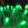 LED Christmas Green Clip Lights/ Decoration String Lights