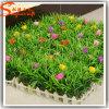Garden Decorative Cheap Artificial Fake Synthetic Grass