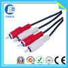 Audio/Video Cable (CH42020)