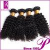 Brazillian Virgin Afro Kinky Curly Human Hair for Black Women