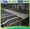Quality Standard Gypsum Board/Plaster Board