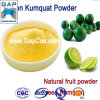 Manufacturer Supply Green Kumquat Powder