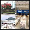 Quality CPVC UPVC Plstic PVC Pipe