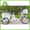 20 Inch 3 Wheel Electric Cargo Small Tricycle with Cabin for Elderly