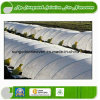 Extra Edge Nonwoven Fabric for Agriculture