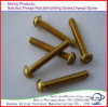 Self Tapping Screw Wood Screw Machine Screw Self Drilling SMS