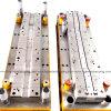 Stamped Die/Tooling/Metal Stamping Tooling (C29)