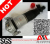 Automobile Part Air Suspension Rear Shock Absorber for Audi Q7
