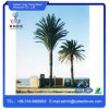 Steel Galvanized Camouflaged Palm Tree Tower / Pine Tree Tower