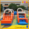 Sport Games Dual Lane Inflatable Obstacle Course Challenge for Sale (AQ14167)