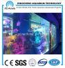 Large Transparent Acrylic Sheet Fish Tank