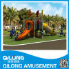 Kids Playground Equipment/Outdoor Playground (QL14-056A)