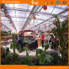 Extensive Use Polycarbonate Board Greenhouse