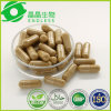 Best Herbal Supplement Extraction Silymarin Powder Milk Thistle Extract Capsule