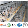 High Quality Small Chicken Cage China Supplier