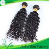 100% Brazilian Virgin Hair Deep Wave Human Hair Extension