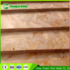 OSB / OSB2 / OSB3 Construction 18mm/12mm/9mm