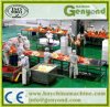 Hot Sale Kimchi Production Line