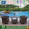 Outdoor Garden Patio Furniture Dining Set (TG-JW55)