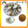 Oyster Extract Oyster Bioactive Peptides