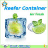 Reefer Container Shipping From Southchina