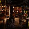 LED Curtain Light Fiber Optic String Light for Holiday/Home/Christmas Decoration