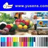 """8.5""""X11"""" 210GSM High Glossy Photo Paper"""