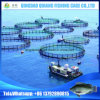 China Hot Selling Popular Aquaculture Tilapia Fish Trap