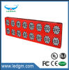 Program Commercial Grower LED Plant Grow Light 100W 200W 300W 400W 500W LED Grow Lights Grow Lights 1000W
